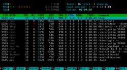 Htop screenshot.png